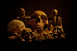 Still life art of a human skull and pile of bones on a black background