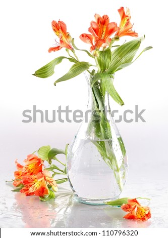 Still-life, bright flower in a transparent glass vase