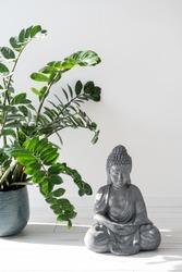 Still life concept. Vertical view of green houseplant standing on wooden floor near gautama buddha statue in meditation pose. Zen buddhist figure in minimalistic room with modern interior design