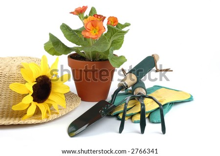 Still life consisting of a had, flowers and garden tools.