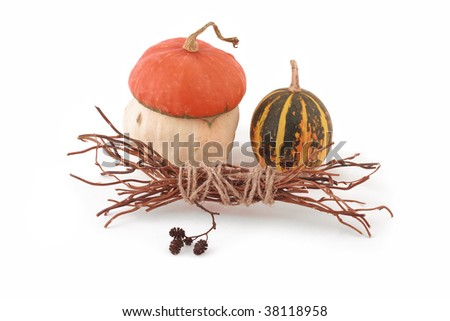Still life: decorative pumpkins and brushwood. Isolated white.