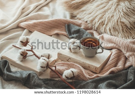 Still life details in home interior of living room. Sweaters and cup of tea with a cone,  nuts and autumn decor on the books. Read, Rest. Cozy autumn or winter concept. #1198028614