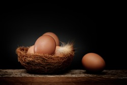 Still life-Eggs on nest arranged in a black scene, Egg is beneficial to the body, Food concept. Dark tone picture.