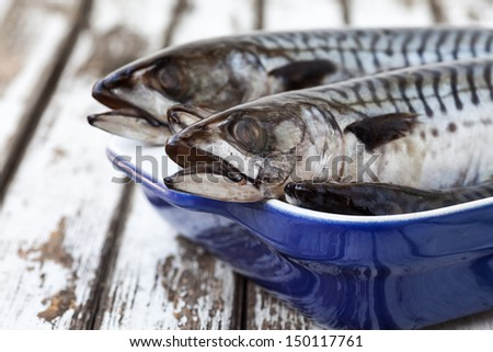 Still Life Mackerel Fish On A Plate and old wood Table