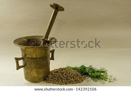 Still life, mortar, coriander seeds, fresh coriander stems.