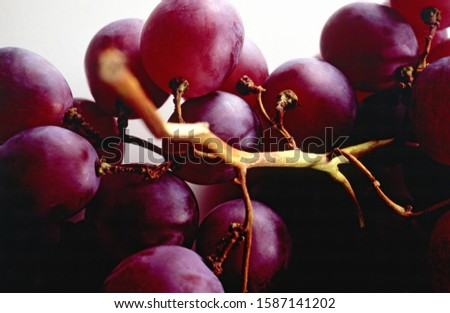 Still life of a bunch of grapes