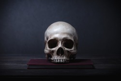 Still life of human skull that died for a long times ,concept of horror or thriller movies of scary crime scene ,Halloween theme, visual art