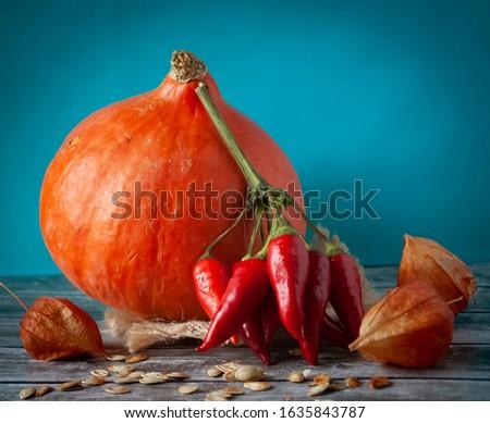Still life of pumpkin, pepper and physalis