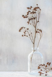Still-life.  photo of a dry branch in a glass vase on the background of the wet window. Art-photo