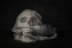 Still life photography with human skull on wood table, Fine art photography with the skull bride with veil on wood table in the dark night
