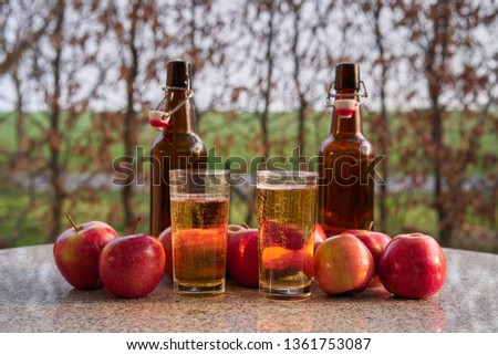 Still life picture on two glasses or jars full of organic sparkling apple cider and two rustic bottles, red riped apples on stone table around in the garden restaurant during summer sunny evening.