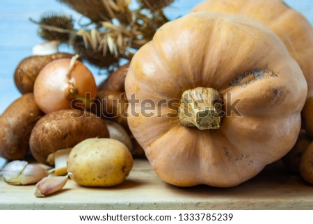 Still life-pumpkin Butternut squash, brown mushrooms, onions, small potatoes, garlic, on a wooden Board. Behind dry ears of wheat. On a blue background. Macro picture.