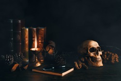 still life vintage of human skull with books, dried flowers, pine  nut, lamp, note book and pen on wooden table in the smoky atmosphere dark room, oil painting style
