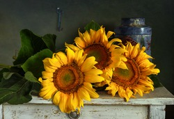 Still life with a bouquet of beautiful sunflowers and a key on the table. Vintage.