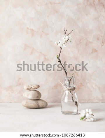 Still life with a branch of blossoming ?pple trees on the background of textured walls in the style of wabi-Sabi. Selective focus.Selective focus. #1087266413