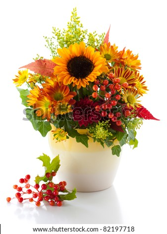 still life with autumnal flowers and berries on the white background