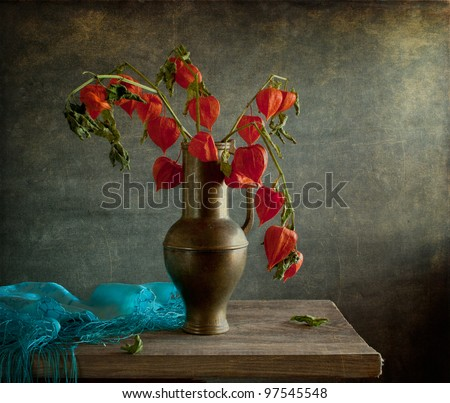 Still life with blue cloth and physalis
