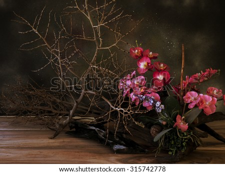 Still life with dry plants in dark color tone #315742778