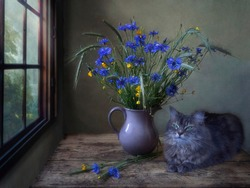 Still life with field flowers and pretty kitty