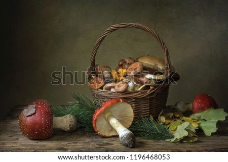 Still life with forest mushrooms