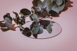 still life with glass reflections on pink background with hard light