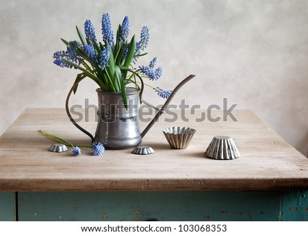Still life with grape hyacinths arranged in an antique watering can with old moulds on a rustic wooden kitchen table - stock photo