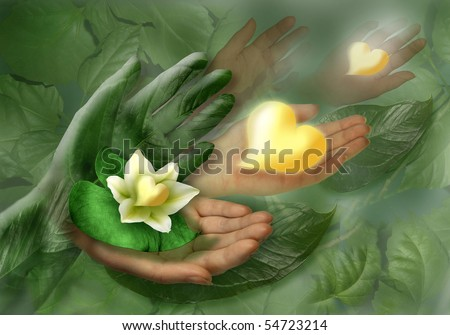 Still-life with hands, leaf and flower as heart. Studio photography.
