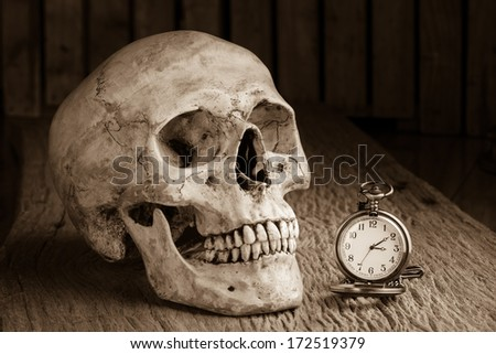 Still life with human skull with pocket watch