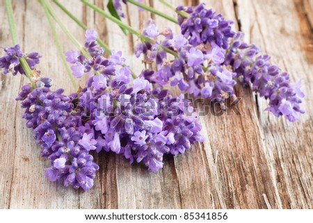 Still-life with lavender bunch on wooden background