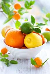 Still life with oranges, lemons,limes,kumquats,calamondin and mandarins