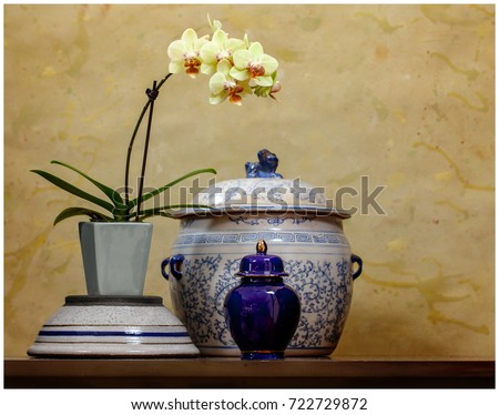 Still life with orchid. #722729872