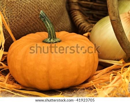 still life with pumpkin, basket, onion, linen and orange bows