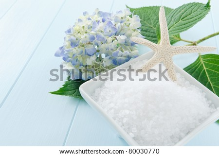 Still life with sea salt bath scrub accented with starfish and hydrangea blossom - copy space on left side