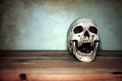 still life with skull on wooden table over grunge background
