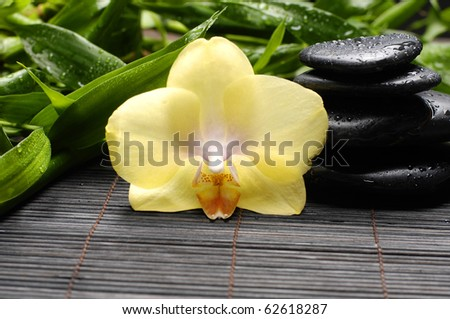 still life with tower and orchid with bamboo green leaf on mat