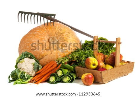 Still life with vegetables as big pumpkin and fruit