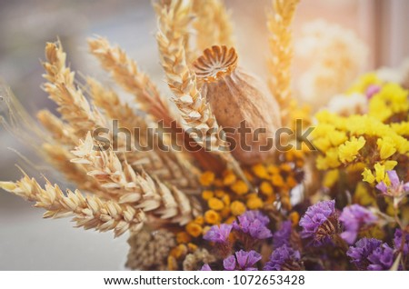 Stock Photo Still life with wheat ears, dry poppy head, yellow and violet wildflowers. Toned image.