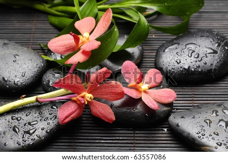 still life with zen back stones and orchid with bamboo leaf on mat