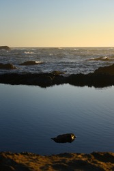 still pool of water next to ocean on rocky coast