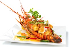 Stir-fried Lobster with Panang Curry Sauce (Thai Style) topping with coconut milk on white square porcelain plate, Isolated on white background, Luxury Seafood Tail Side view. Selective Focus at front