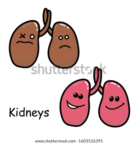 Stock illustration. image of the internal organs of the kidney Isolated on a white background. Drawing in cartoon style medicine for children. comparison of sick and healthy kawaii organ