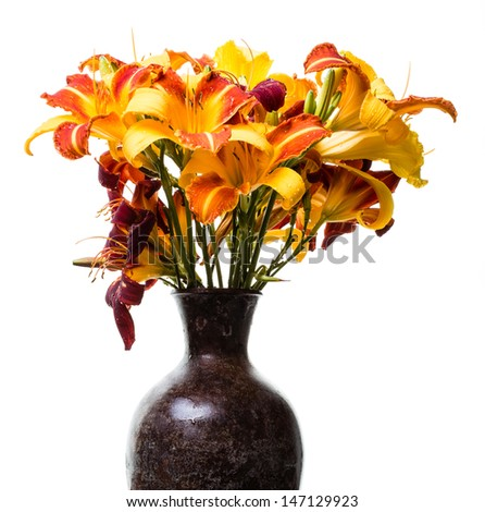 Stock image of assorted fresh picked daylillies in a metal vase over white background.