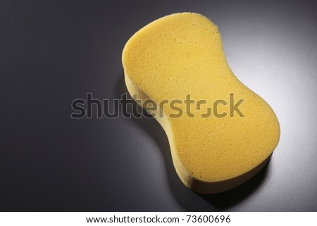 stock image of  sponge on the black