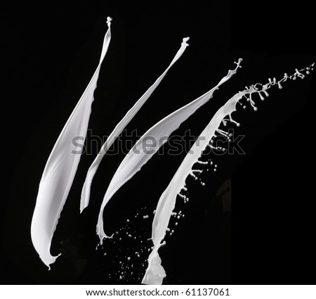 stock image of the milk splash