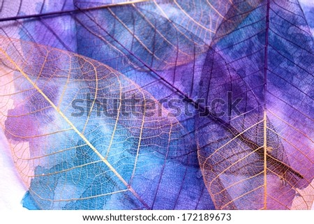 Stock leaf abstract background