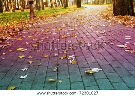 Stock Photo: brick road in the park covered with yellow fallen leaves