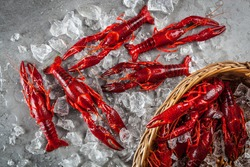 Stock photo of red freshwater crayfish on a metal surface and in a basket with crushed, partly melted ice. Top view.