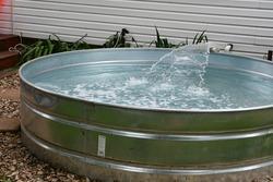 Stock tank swimming pool in a yard