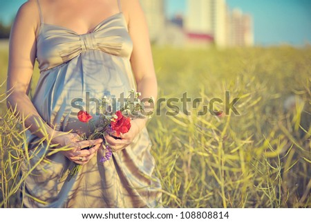 stomach of the pregnant woman against a decline over a field with wheat and cones in hands