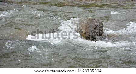 Stone against flowing river water current, Savitri River, Poladpur, Mahabaleshwar,  #1123735304